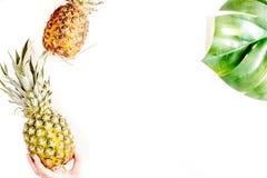 Sobremesa do verão com abacaxis e planta na zombaria branca da opinião superior do fundo acima Foto de Stock Royalty Free