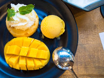 Sobremesa feita da manga da barracuda Imagem de Stock