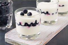 Sobremesa fresca do iogurte e dos mirtilos Imagens de Stock Royalty Free