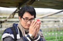 Sobretudo vestindo do homem considerável asiático do turista na estufa da morango Imagem de Stock