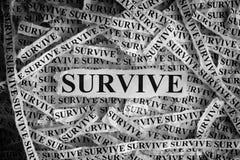 sobreviva Os pedaços de papel rasgados com a palavra sobrevivem imagens de stock