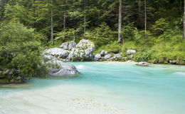 Soca flod i den Triglav nationalparken Arkivbild