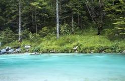 Soca flod i den Triglav nationalparken Royaltyfri Bild