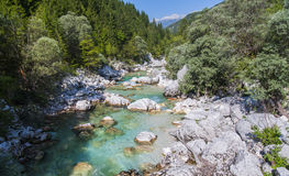 Soca-/Isonzoflod, Slovenien Arkivbilder