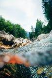 Mountain River in Slovenia Stock Photography