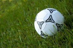 Soccer. Football Royalty Free Stock Photo