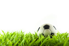 Soccer. Ball on meadow, isolated on white stock photography