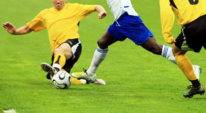 Free Soccer Stock Photography - 6317722