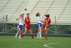 Free Soccer Action Stock Photography - 24706552