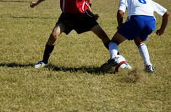 Soccer Action. Young soccer players fight for control of the ball Stock Photos