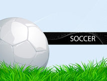 Soccer background with ball and grass Stock Images