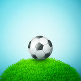 Soccer bal on the grass field Royalty Free Stock Photo