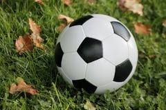 Soccer ball Royalty Free Stock Image
