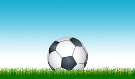 Soccer ball. & Grass with blue sky vector illustration