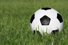 Soccer ball. Classic black and white soccer ball on green grass royalty free stock photography