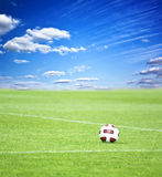 Soccer ball. On green grass and blue sky background Stock Images