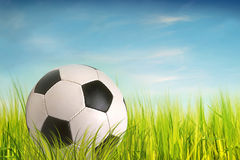 Soccer ball. On grass, blue sky as background Stock Images