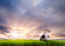 Soccer ball. On green grass Royalty Free Stock Photo