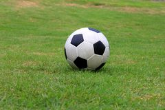 Soccer ball. A soccer ball on field of grass Stock Photography