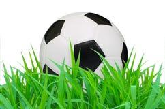 Soccer Ball Royalty Free Stock Photo