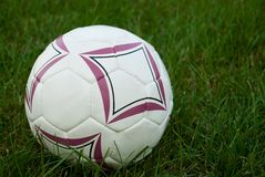 Soccer Ball. Set on a grass field Stock Photography
