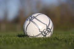 Soccer Ball. White Soccer Ball in the Grass Stock Image