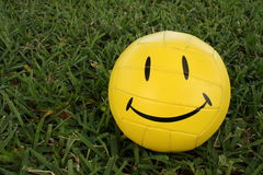 Soccer Ball. Happy face soccer ball on green grass stock photo