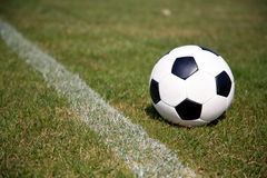 Soccer Ball. The picture shows a soccer ball lying on lawn Royalty Free Stock Photography