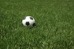 Soccer Ball Awaiting a Game. Soccer ball laying in tall green grass waiting for a game Royalty Free Stock Photo
