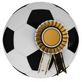 Soccer ball with award. On a white background Stock Images