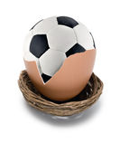 Soccer ball birth Stock Photo