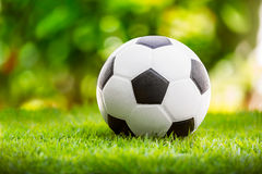 Soccer ball. Black and white leather soccer ball on green grass Royalty Free Stock Images