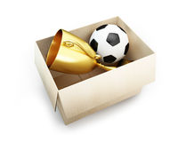 Soccer ball in the box. 3d Illustrations Royalty Free Stock Photography