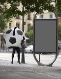 Soccer ball disguise Royalty Free Stock Image