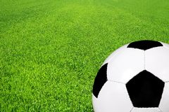 Soccer ball on a field Stock Image