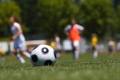 Soccer ball on field royalty free stock photos