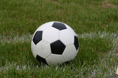 Soccer Ball on Field. A soccer ball sits on a field Stock Photo