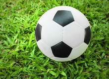 soccer ball on field. Royalty Free Stock Image