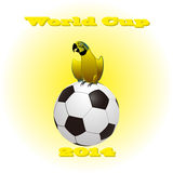 Soccer ball and flag of Brazil 2014. Parrot on ball of Brazil 2014 Royalty Free Stock Images