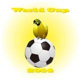 Soccer ball and flag of Brazil 2014. Parrot on ball of Brazil 2014 royalty free illustration