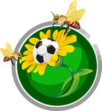 Soccer ball in the flowers Royalty Free Stock Image