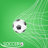 Soccer ball or football in the goal net. football  Royalty Free Stock Photos