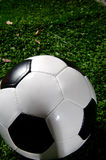 Soccer Ball or football on Grass Royalty Free Stock Image