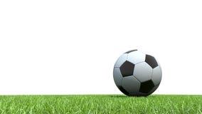 Soccer ball football on grass. 3D Soccer ball football on grass Royalty Free Stock Image