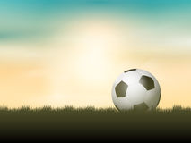 Soccer ball or football nestled in grass Stock Images