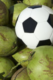 Soccer Ball Football Resting with Fresh Green Coconuts Stock Photo