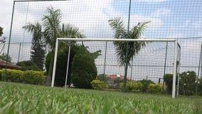 Soccer Ball, Futbol, Footy, Sports stock video