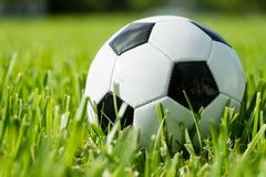 Soccer Ball Futbol on Grass. Black and white traditional soccer ball football futbol on grass Stock Photo