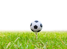 Soccer ball on golf tee Stock Photo