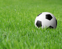 Soccer Ball In Grass Stock Photos